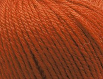 NEW - Persimmon - Merino Magic 10 Ply